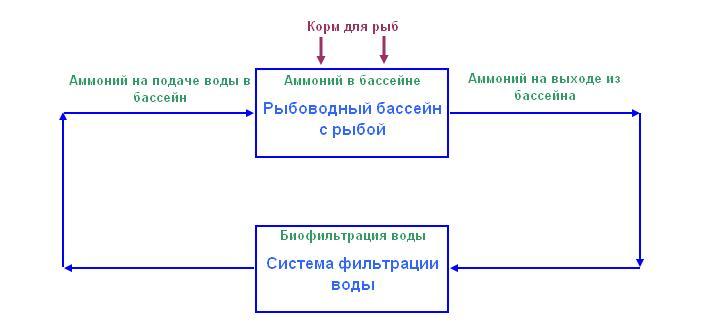 Схема расчета килорода в рыбоводном бассейне